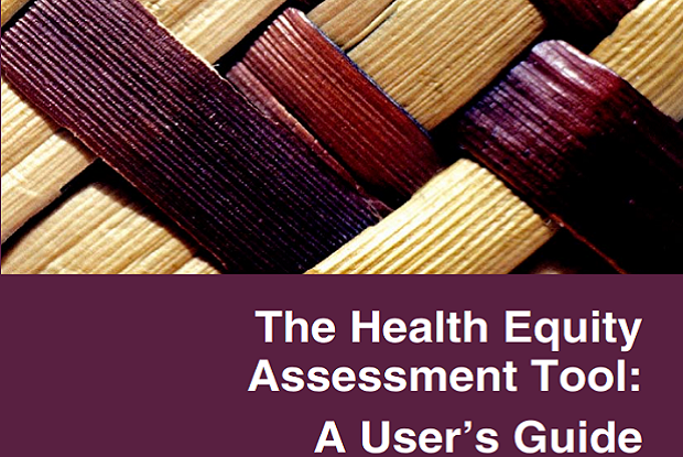 Health Equity Assessment Tool