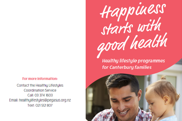 Healthy Lifestyles Brochure