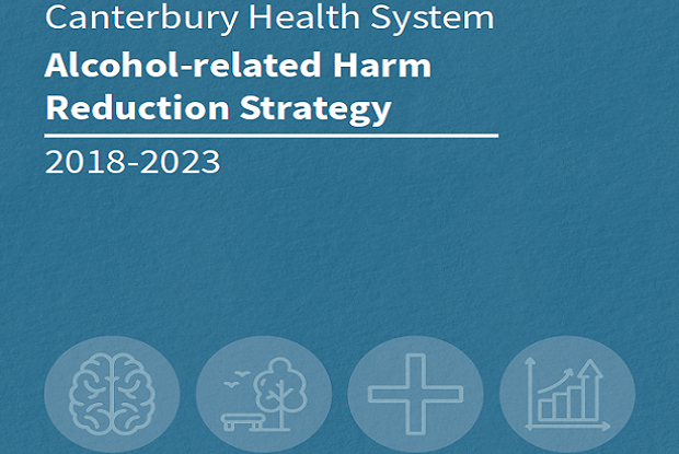 Alcohol-related harm reduction strategy